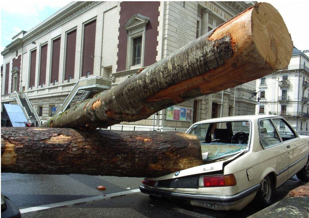 Coche siniestrado - Foto: http://noticias.coches.com