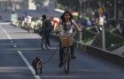 ciclista-pasea-perro